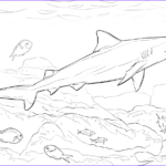 Great White Shark Coloring Pages Beautiful Images Realistic Bull Shark Coloring Page