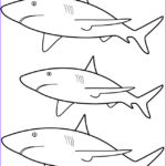 Great White Shark Coloring Pages Beautiful Photography 3 Great White Sharks Coloring Page Sea Marine