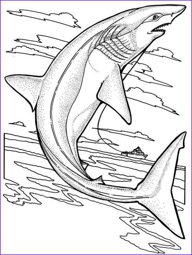 Great White Shark Coloring Pages Luxury Photos Free Printable Shark Coloring Pages for Kids
