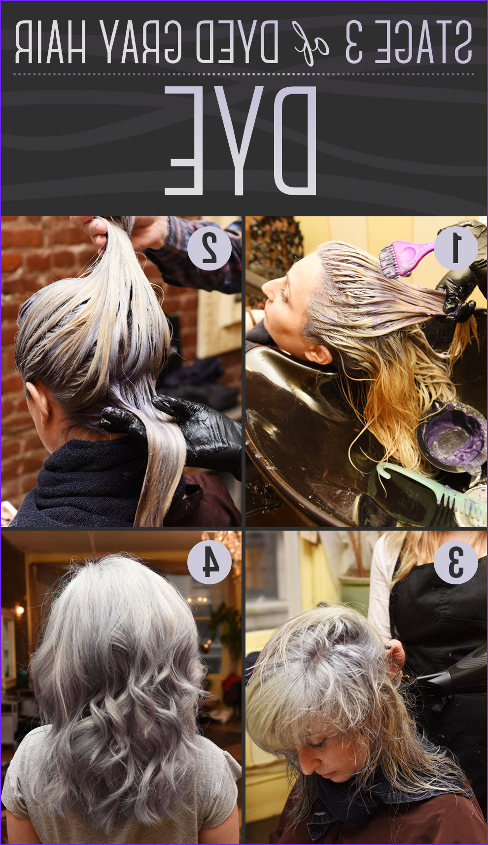 How to Go Gray after Coloring Luxury Photos Here is Every Little Detail How to Dye Your Hair Gray