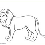 Lion Coloring Books Best Of Photography Free Printable Lion Coloring Pages For Kids