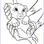 Lion Coloring Books Inspirational Stock Lion King Coloring Pages Best Coloring Pages For Kids