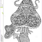 Mushroom Coloring Pages Best Of Gallery Hand Drawn Magic Mushrooms for Adult Anti Stress Coloring