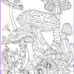 Mushroom Coloring Pages Inspirational Image Mushrooms Adult Coloring Page