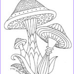 Mushroom Coloring Pages Inspirational Images 204 Best Adult Colouring Mushrooms Toadstools