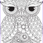 Owl Coloring Book For Adults Awesome Photos Pin By Shreya Thakur On Free Coloring Pages
