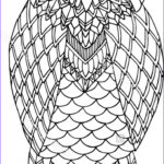 Owl Coloring Book For Adults Beautiful Collection 17 Best Images About Owl Coloring Pages For Adults On