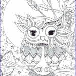 Owl Coloring Book For Adults Best Of Gallery 25 Best Ideas About Owl Coloring Pages On Pinterest