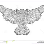 Owl Coloring Book For Adults New Photos Owl Coloring Book For Adults Vector Stock Vector