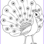 Peacock Coloring Pages Elegant Photos Peacock Coloring Page Stock Vector Art & More Of