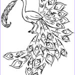 Peacock Coloring Pages Elegant Photos Peacock Coloring Pages