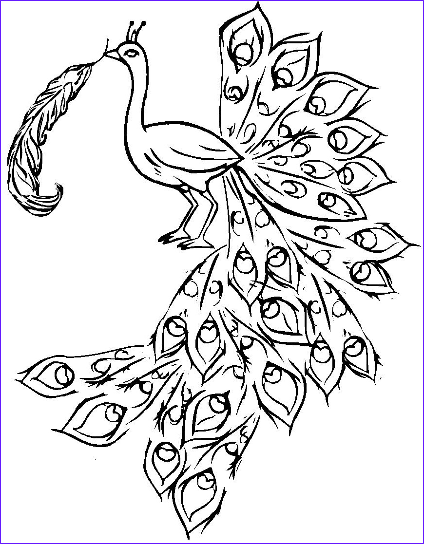 Peacock Coloring Pages New Gallery Free Printable Peacock Coloring Pages