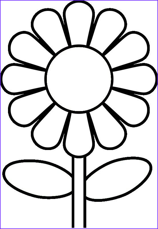 Printable Coloring Pages for Preschoolers New Photography Coloring Pages for Preschoolers