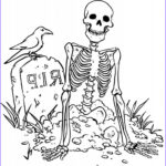 Printable Coloring Pages For Toddlers Best Of Photos Free Printable Skeleton Coloring Pages For Kids