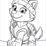 Printable Paw Patrol Coloring Pages New Image Paw Patrol Everest Coloring Page