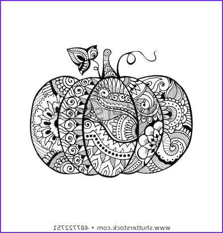 Pumpkin Coloring Pages for Adults Beautiful Images Zentangle Black White Halloween Pumpkin Filled Stock