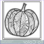Pumpkin Coloring Pages For Adults Beautiful Photography Best 25 Pumpkin Coloring Sheet Ideas On Pinterest
