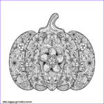 Pumpkin Coloring Pages For Adults Beautiful Photos Halloween Adult Plex Pumpkin With Flowers Coloring