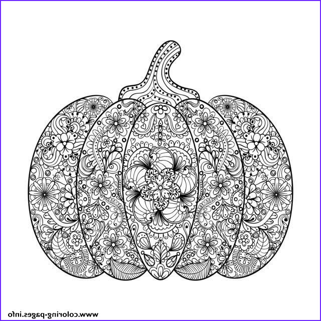 halloween adult plex pumpkin with flowers printable coloring pages book