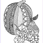 Pumpkin Coloring Pages For Adults Beautiful Stock Textured Pumpkin Adult Coloring Page