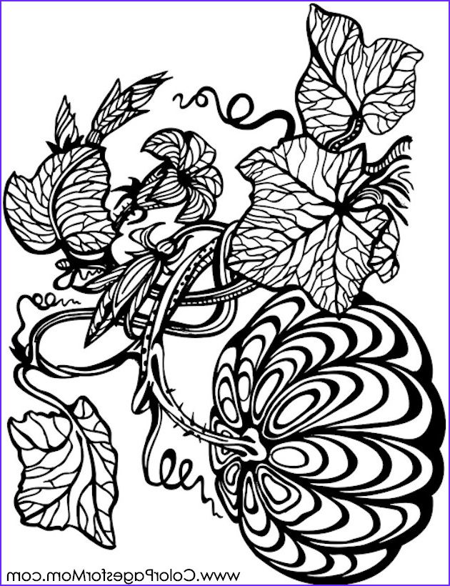 Pumpkin Coloring Pages for Adults Luxury Stock Coloring Pages for Adults Halloween Pumpkin Coloring Page