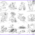 Rainforest Animals Coloring Page Cool Collection Coloring By Me