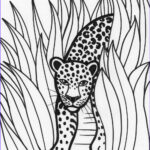 Rainforest Animals Coloring Page Cool Images Rainforest Coloring Pages Endangered Species Coloring