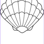 Sea Shells Coloring Page New Photography A Lovely Zigzag Scallop Seashell Drawing Coloring Page By