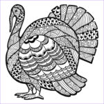 Thanksgiving Coloring Pages Best Of Photos Thanksgiving Coloring Pages For Adults To And