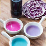 Things to Do with Food Coloring Unique Photos Diy Magical Color Changing Food Coloring Oh the Things