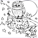 Wildlife Coloring Pages Beautiful Photos Zoo Animals Coloring Pages Coloringsuite