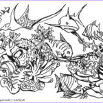 Wildlife Coloring Pages Cool Photos Realistic Animals Coloring Pages