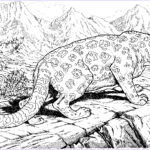 Wildlife Coloring Pages New Image Animal Coloring Pages For Adults Bestofcoloring