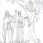 Zacchaeus Coloring Page Beautiful Collection Jesus And Zacchaeus Coloring Page Coloring Home