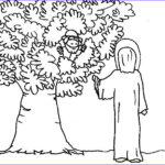 Zacchaeus Coloring Page New Stock Jesus And Zacchaeus Coloring Page Coloring Home