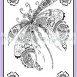 Zen Coloring Book Cool Stock Adult Colouring In Pdf Dragonfly Henna Zen Mandalas