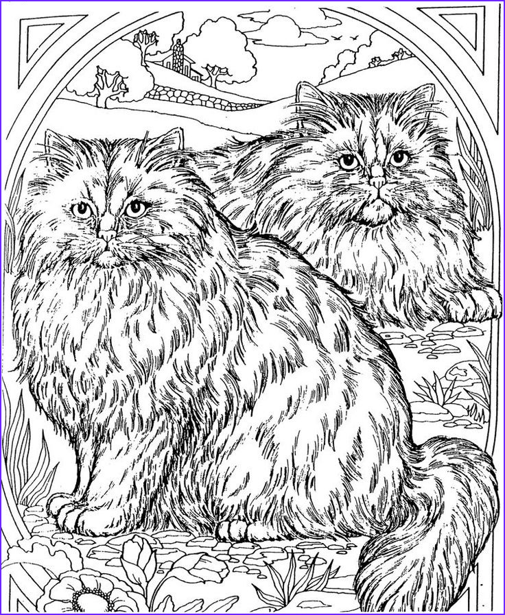 Adult Cat Coloring Pages Elegant Photos Adult Coloring Page Cat