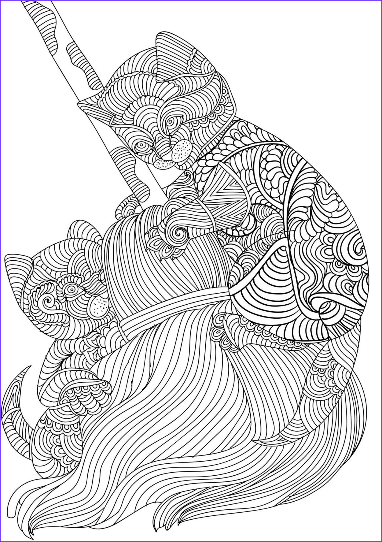 Adult Cat Coloring Pages New Stock Bestadultcoloringbooks