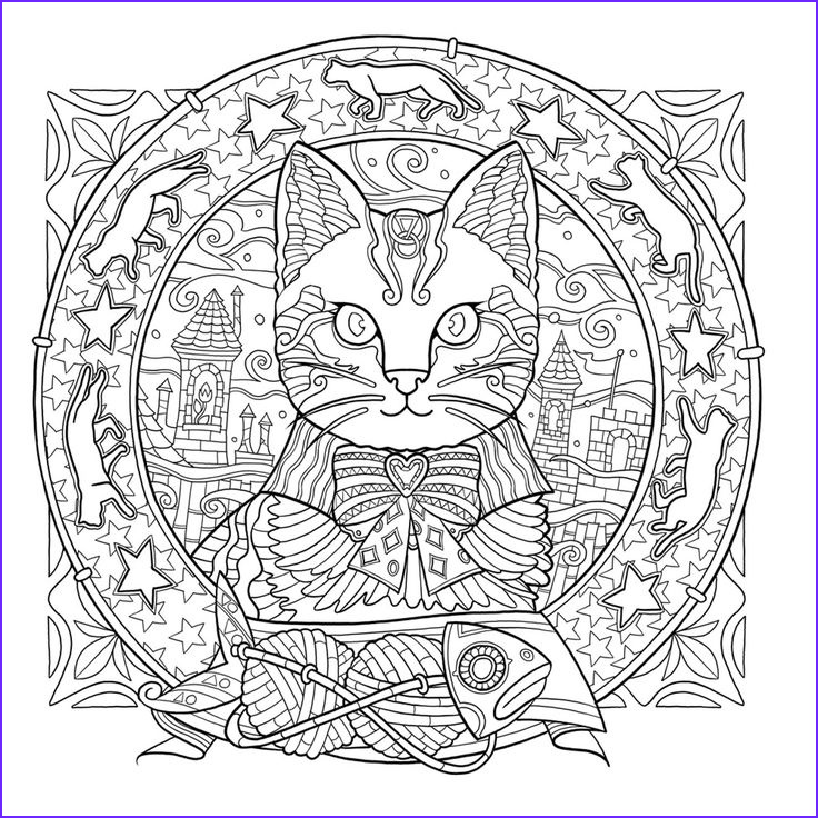 Adult Cat Coloring Pages Unique Images 627 Best Images About Adult Colouring Cats Dogs