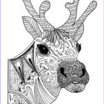 Adult Christmas Coloring Pages Cool Collection Christmas Reindeer Adult Coloring Page