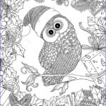 Adult Christmas Coloring Pages Luxury Collection 680 Best Coloring Owls Images On Pinterest