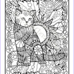 Adult Coloring Book Cat Luxury Collection 629 Best Images About Adult Colouring Cats Dogs