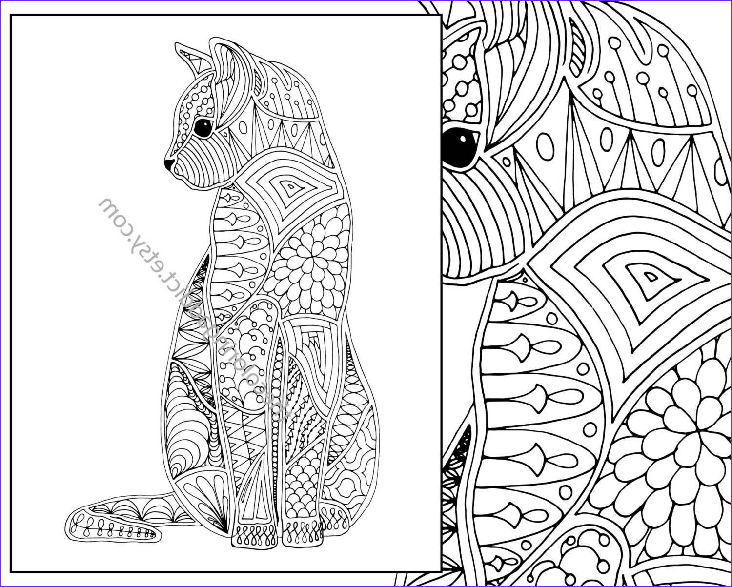 cat coloring page advanced coloring page