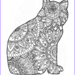 Adult Coloring Book Cat New Image Adult Colouring Page Original Digital Download