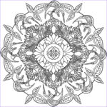 Adult Coloring Book Mandala Cool Collection Free Printable Adult Coloring Pages