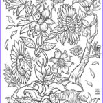Adult Coloring Book Pages Fantasy Luxury Photos Floral Fantasy Digital Version Adult Coloring Book