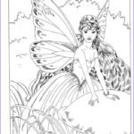 Adult Coloring Book Pages Fantasy New Photography Fairy Myth Mythical Mystical Legend Elf Fairy Fae Wings