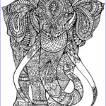Adult Coloring Book Pictures Awesome Stock Printable Coloring Pages For Adults 15 Free Designs