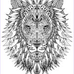 Adult Coloring Book Pictures Beautiful Collection Hard Coloring Pages For Adults Best Coloring Pages For Kids