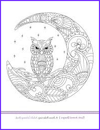 exotic animal designs stress relieving adult coloring book by katie packer